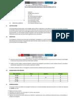 Protocolo de la Investigación Individual.docx