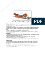 Core Region Circuit Training Exercises