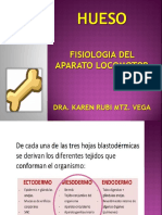HUESO Fisiologia