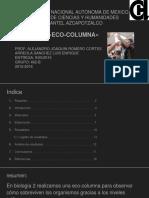 Ecocolumna Completo