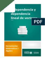 Independencia y Dependencia Lineal de Vectores 4º