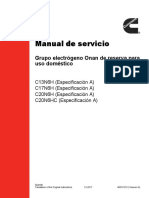 Manual Electrogeno Onan Gas
