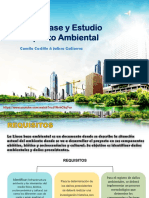 Linea de Base y Estudio Ambiental