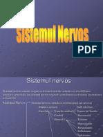 Sist.nervos1