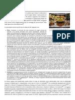 Veganismo.pdf