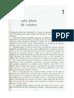Rio Viviente i