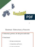 2.-enzimas.pdf