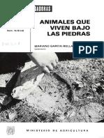 Animales Que Viven Bajo Las Piedras