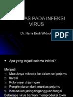 Imunitas Pada Infeksi Virus