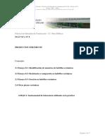 Práctica Nº 8 _Cerámicos.pdf