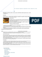 Ciclo Do Açúcar No Brasil - Resumo, História, Economia