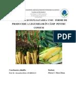 Proiect legumicultură.pdf