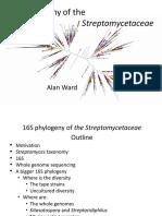 Streptomyces_tree.pptx