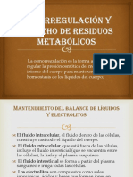 Osmorregulacion y Desechos de Residuos Metabolicos
