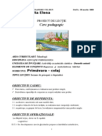 0proiected.tehnologica4.doc