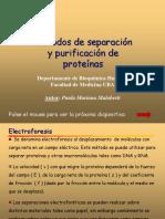 ELECTROFORESIS FINAL.pps