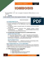 Trombosis Implicancia Clinica