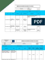 Formato identificación de peligros 2010.xls