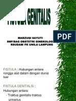 Fistula genitalis.ppt