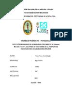 Universidad Nacional de La Amazonía Peruana