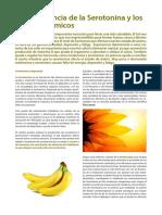 ImportanciaSerotonina Article Web