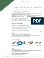 Papo - Buscar Con Google