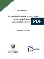 Incidencia del tipo de manejo sobre la artropodofauna del agroecosistema del olivar.
