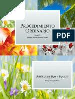 Procedimiento Ordinario Laboral PPT