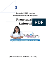 Laboral Prontuario.pdf