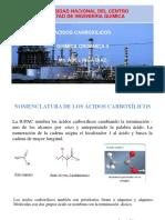 ACIDOS CARBOXILICOS.pdf