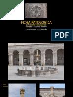Ficha Patologica Fuente AREQUIPA PERU