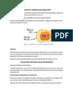 LINFOCITOS T ASESINOS NATURALES NKT.docx