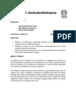 24-dinitrofelinhidrazina