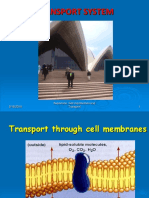 Cell Membrane Transport