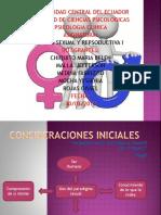 Grupo 1 - Histori de La Sexualidad
