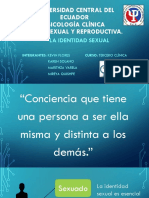 Grupo 12 - Identidad-Sexual