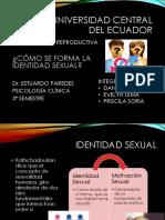 Grupo 11 Como Se Forma La Identidad Sexual