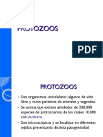 Diapositivas Protozoos ..Manay (1)