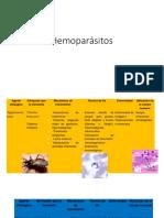 Hemoparásitos