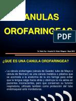 Canulas de Mayo - Dr. Pablo Fay