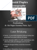 Angga - Seminar Carotid Duplex Sonography.pptx