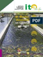 El sector acuícola en Castilla y León.pdf