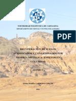 Recuperacion suelos contaminados