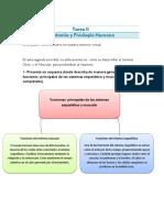 Tarea II Anatomia y Fisiologia Humana