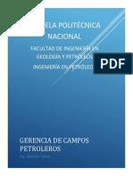 Gerencia Libro2