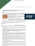 Índios do Brasil - história, cultura, sociedade indígena, arte, tribos.pdf