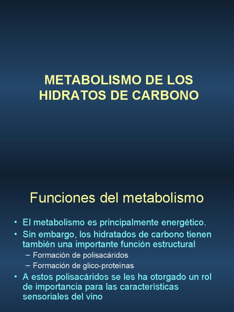 Booster de metabolismo Natural