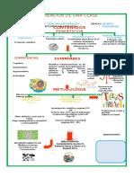 didactica mapa
