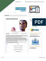 diplomado de mecatronica.pdf