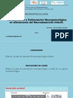 Alteraciones en El Neurodesarrollo